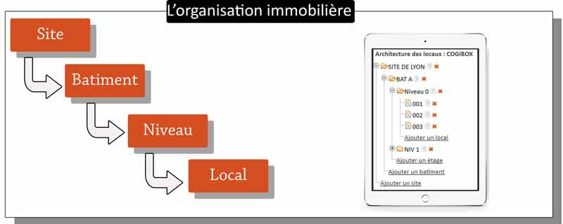 organisation-immobiliere